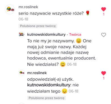 TikTok Kutno screen (3)